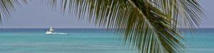 Ocean View - Beach